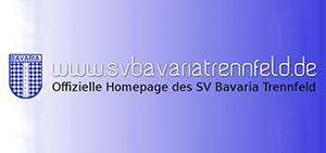 Unsere Partner - Zimmerei Helmut Martin - SV Bavaria Trennfeld